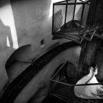 Fotografi Profesionisti De Nunta | Fotograf Profesionist | Fotografie de Nunta | Fotografie de Botez | Fotografie Corporate | Fotografie de Portret | Studio Foto | Fotografie de Produs | Adrian Andrunachi | Studio Sapte